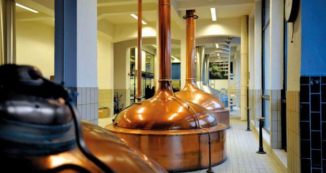 Bière Blanche de l'été : La STEENBRUGGE Wit-Blanche – Palm